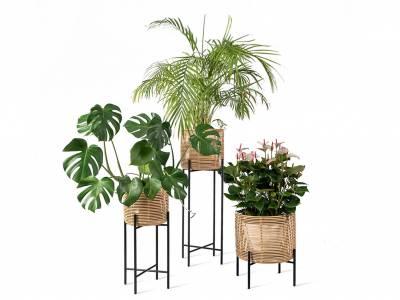 Vincent Sheppard Vivi Plant Stand Large